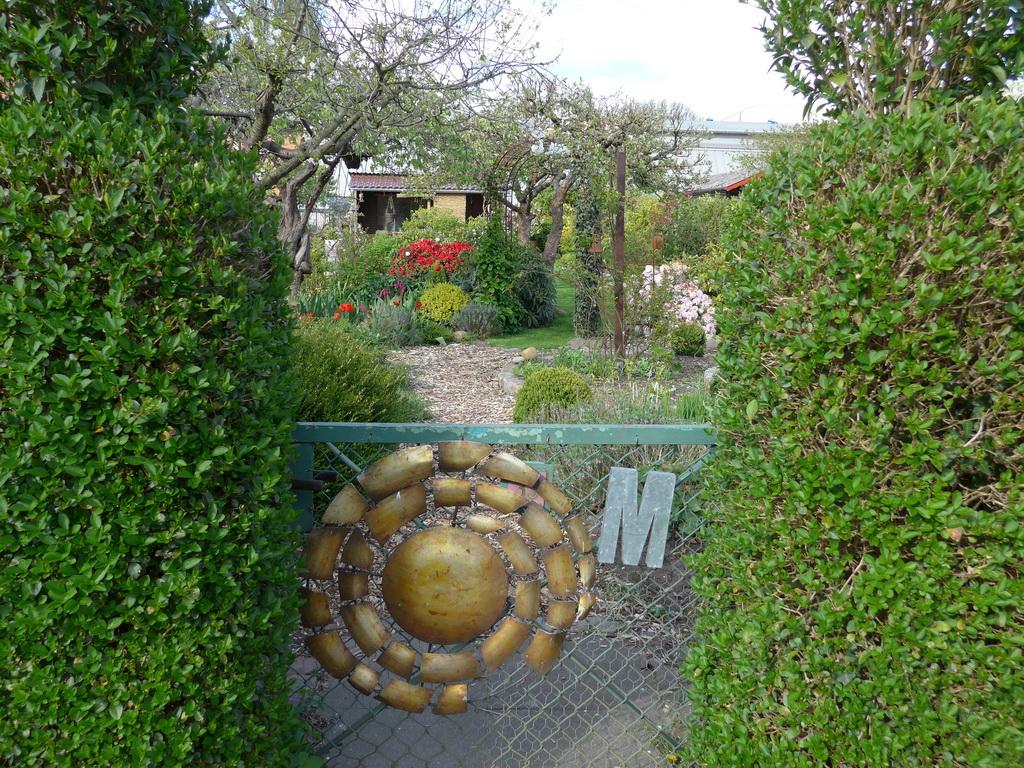 Der Garten unseres Fachberaters