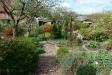 Der Garten unseres Fachberaters2