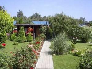 Der Schrebergarten Gartenbauverein Es Bluht E V